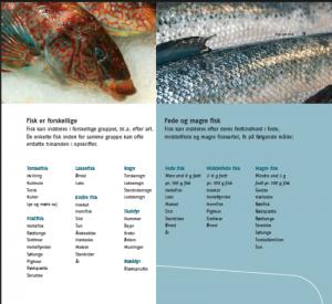forskellige fisk